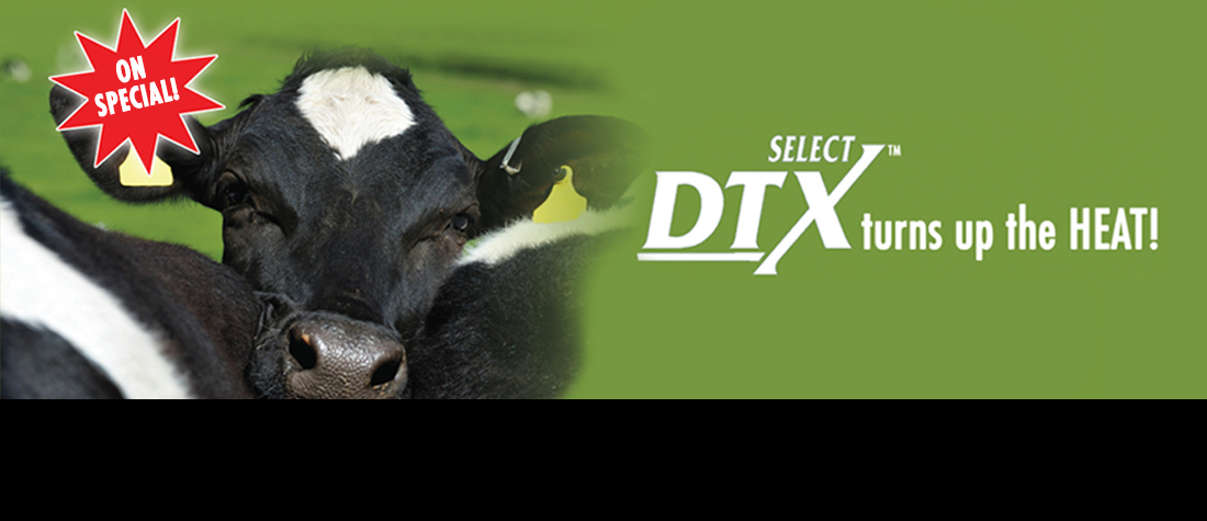 Select DTX Special
