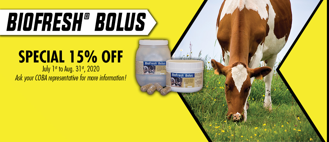 Biofresh® Bolus On Special!